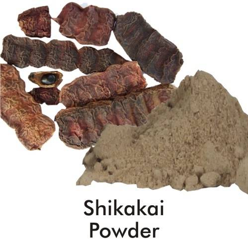 Shikakai Pulver